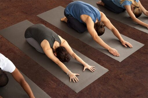 brown salami cork yoga exercise working out studio healthy flooring