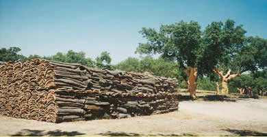 cork material properties bark oak