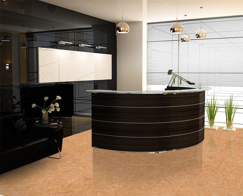 desert arabel cork floor reception modern office