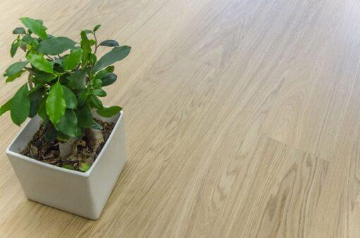 meadow real design wood floor