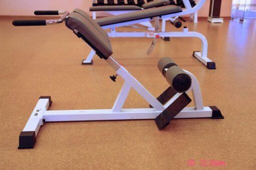 solid cork flooring golden beach home gym